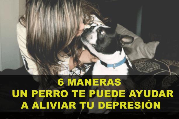 6 formas en que Tener un perro te ayuda para la depresión