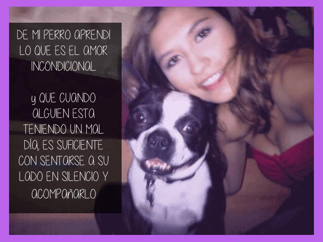 de-mi-perro-aprendi