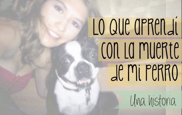 Aprendiendo a superar la muerte de mi perro