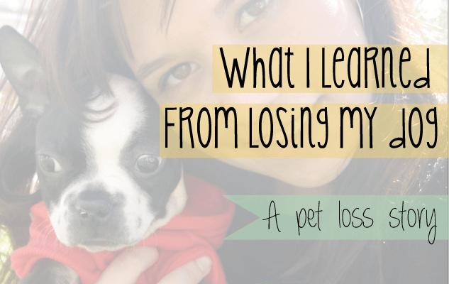 a story of pet loss