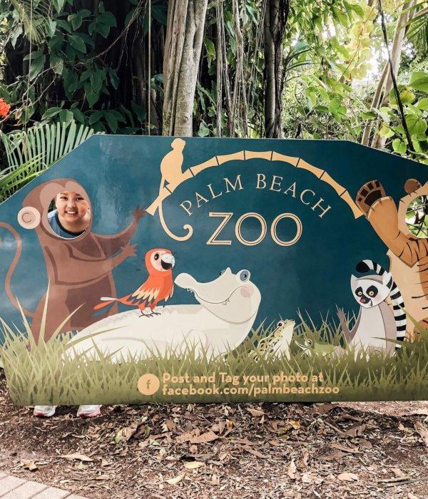 12 Zoo animal craft ideas to do During Spring Break